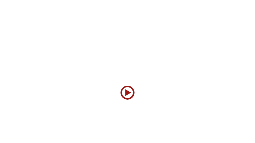 fall-winter collection 2015-16